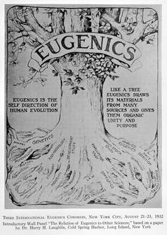 Illustration of a tree representing eugenics from a eugenics conference in 1932